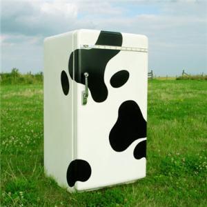Un frigo dans son milieu naturel… mais est-ce un bon frigo ?
